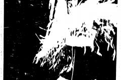 Dozynki_gromackkie-2.IX.1962r.1-1